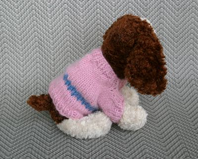 Puppy sweater 1 042809