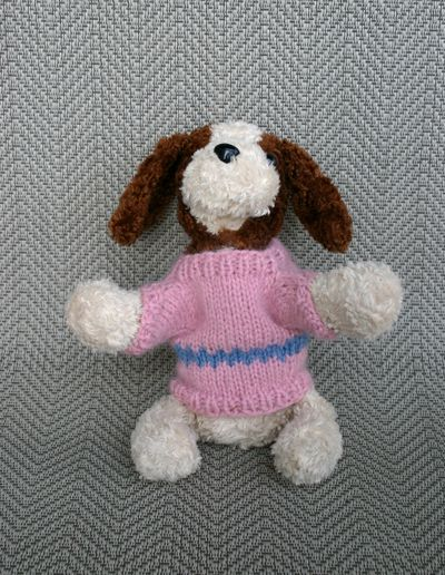 Puppy sweater 3 042809