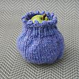 Pear Apple Cozy 1