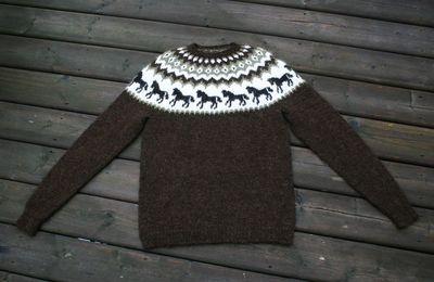 Horse Sweater 081310 005 edit