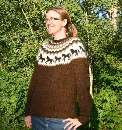 Horse Sweater 081410 A