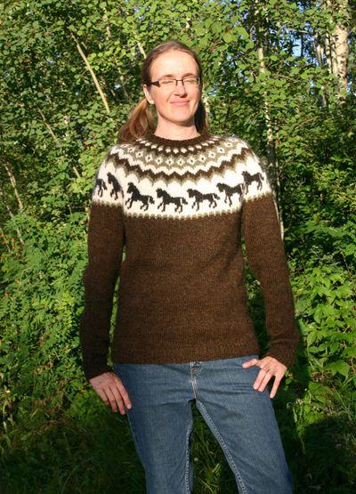 Horse Sweater 081410 C