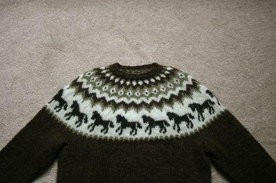 Horse Sweater 081310 011 edit