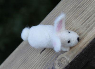Bunny 1 072411
