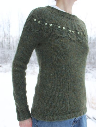 Owls sweater 121811 C
