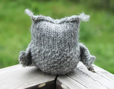 Owlet from the back