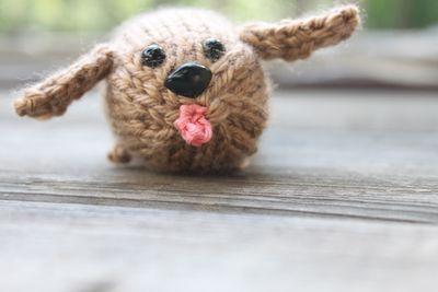 Puppy Bean!