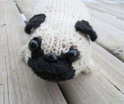Pug face 1 111814