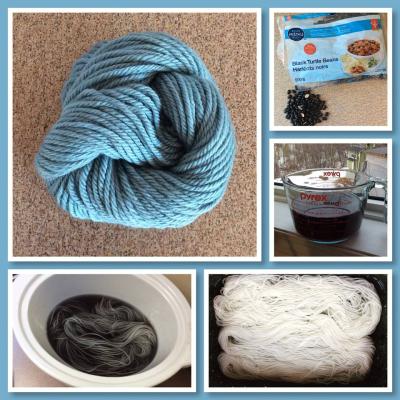 Black Bean Dye Experiment Collage