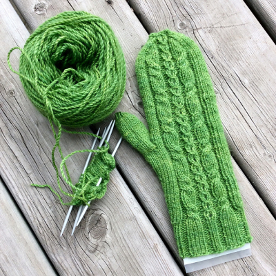 Mohair mitts 040317