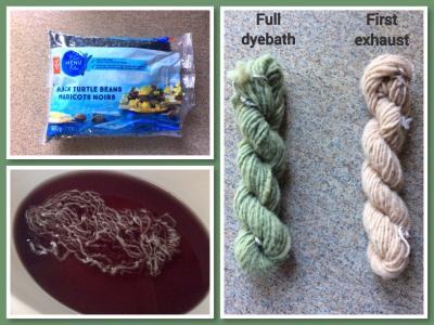 Bean dye experiment 1 (Custom)