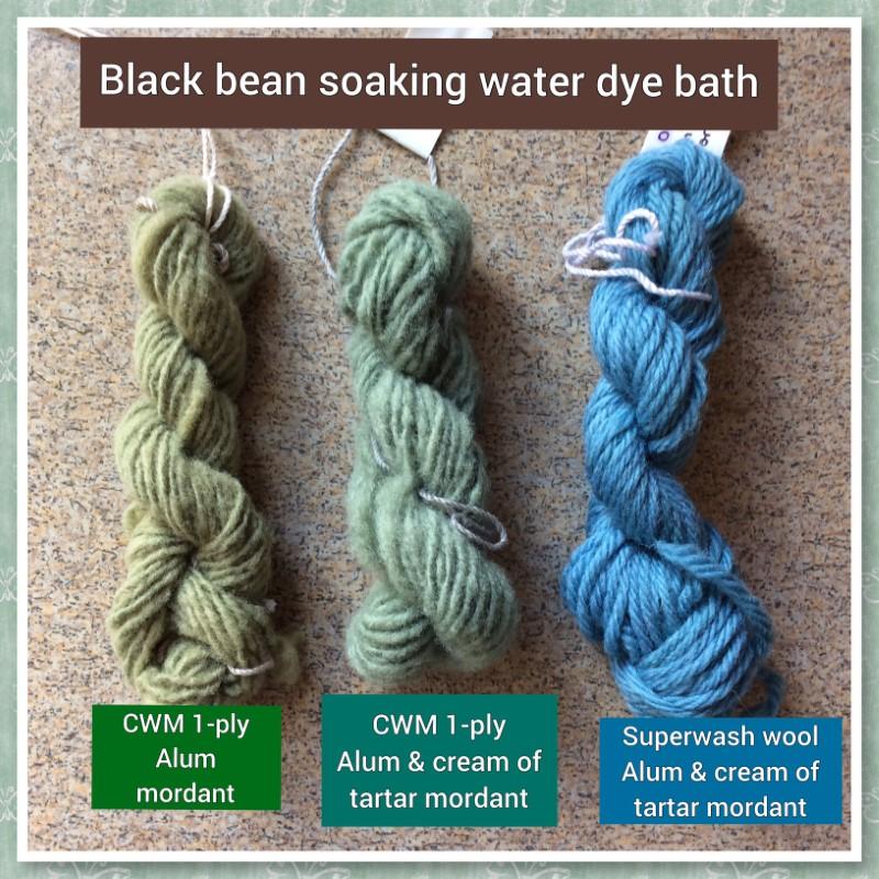 Black bean dye club experiments (Custom)