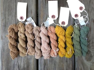Dye Club final palette (Custom)