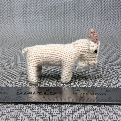 Tiny goat 2