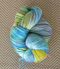 Handpainted_yarn_020506