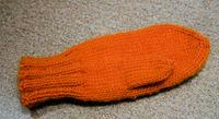 One_orange_mitten_090606