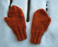 Snow_country_mitts_3_prefelting_113006